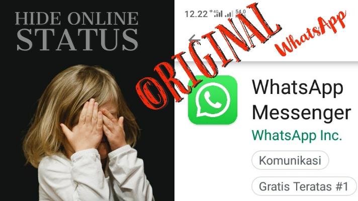cara menyembunyikan status online di wa biasa