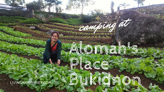 Camping At Alomah's Place Organic Farm in Bukidnon