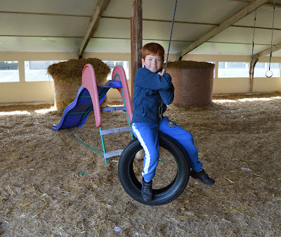 Tattershall Farm Park - A review - indoor play barn