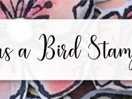 Free as a Bird Gift Set, Stampin' Up!