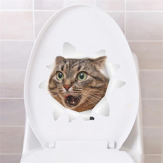 Cara latih kucing berak di litter box
