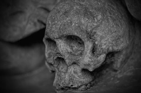 Újabb középkori tömegsírokat tártak fel a kelet-csehországi Kutná Horában