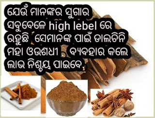 benifit of dalchini in odia