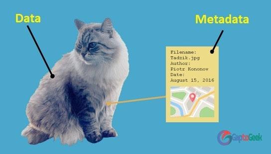 Cara Hapus Metadata Foto/Gambar di Android dan Windows 10