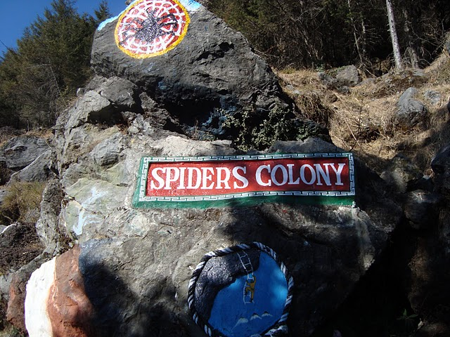 spider colony deoban