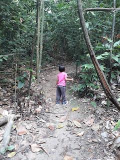 Hiking @ Denai Tiga Puteri 2.0, Kota Damansara