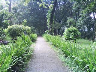 Taman Lansia