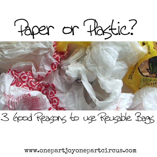 Paper or Plastic? 3 GOOD Reasons to use Re-Usable Bags