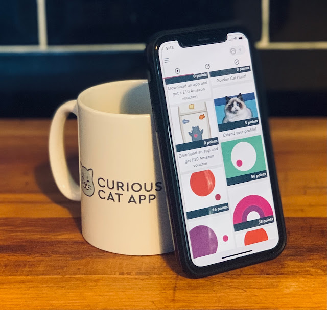 Curious cat app- cup and phone showing app