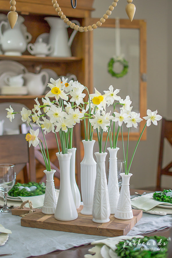 daffodils in vintage white milk glass vases