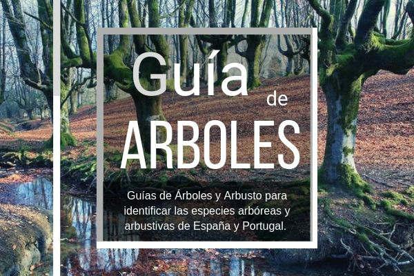 Aquí es donde puedes comprar la guía de arboles de España y Portugal
