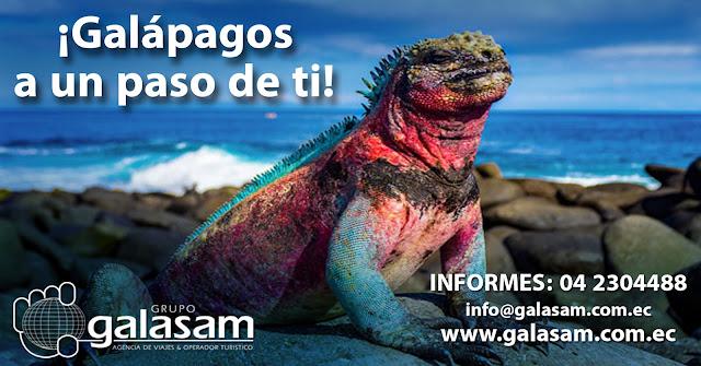 Galápagos con su espectacular fauna y flora, única en el planeta te espera.