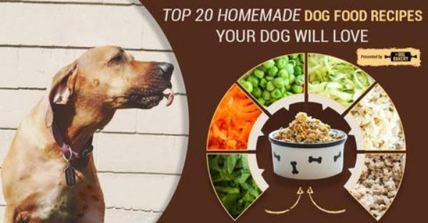 home made dog food, organic dog food, dog food diy