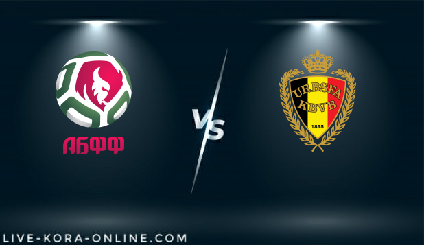 مشاهدة مباراة بلجيكا وبيلاروسيا بث مباشر اليوم بتاريخ 30-03-2021 في تصفيات كأس العالم