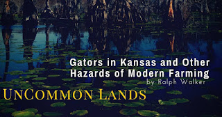 """""""Gators in Kansas and Other Hazards of Modern Farming"""" by Ralph Walker"""