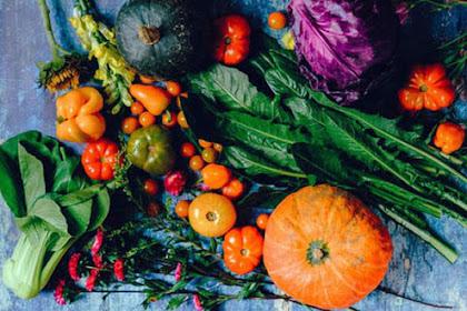 Sehat Itu Mahal Harganya, Mulailah Pola Hidup Sehat dari Sekarang