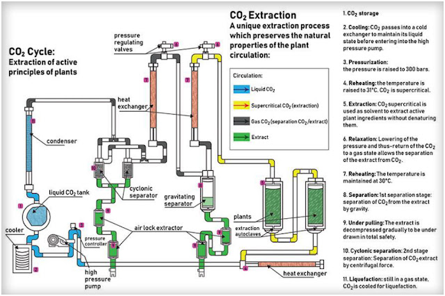 Process Extraction CannaCor