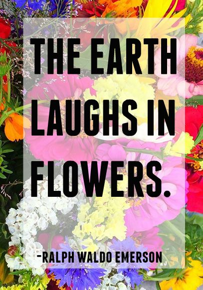 the earth laughs in flowers -ralph waldo emerson