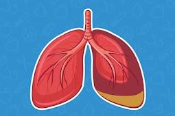 Obat alami untuk menjaga kesehatan paru-paru