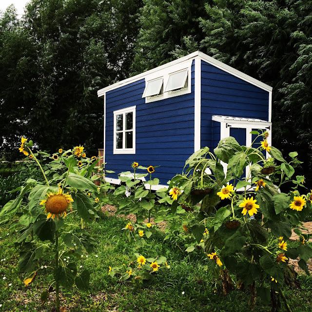 Lil Blue tiny house