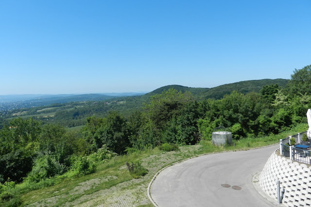 widok na okolicę ze wzgórza Kahlenberg