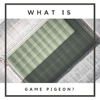 what is game piegon