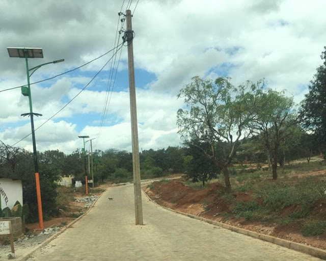 Poles at the middle of the road in Taita Taveta