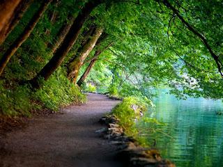 Plitvice Lakes National Park,Croatia 02