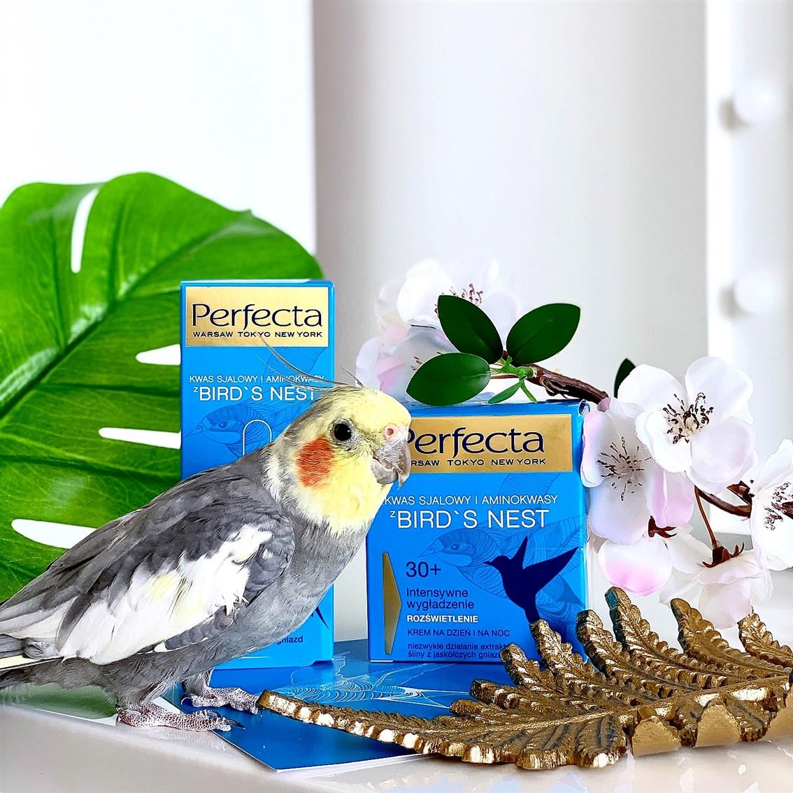 Perfecta Bird's Nest krem na dzień i na noc 30+