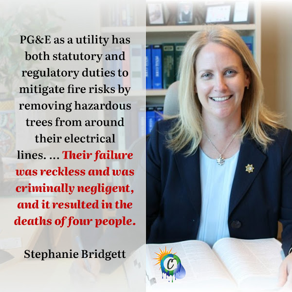 PG&E as a utility has both statutory and regulatory duties to mitigate fire risks by removing hazardous trees from around their electrical lines. ... Their failure was reckless and was criminally negligent, and it resulted in the deaths of four people. — Shasta County District Attorney Stephanie Bridgett