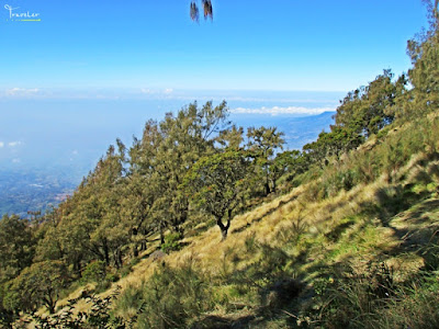 pendakian gunung arjuno via lawang