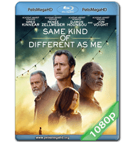 SAME KIND OF DIFFERENT AS ME (2017) FULL 1080P HD MKV ESPAÑOL LATINO