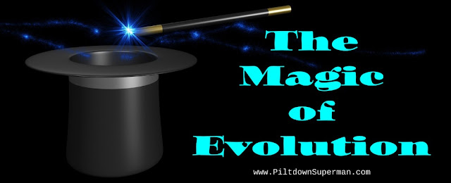 Evolution seems less like science and appears more like magic, invoking forces and misusing natural selection.