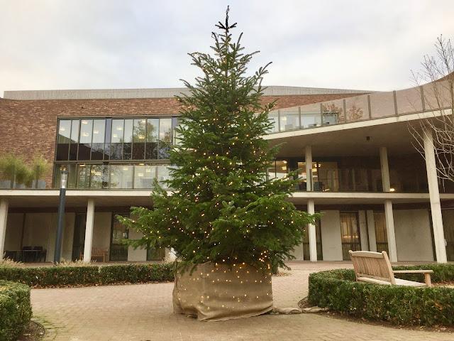 Grote kerstbomen voor binnen of buiten huren (prijzen op aanvraag) voor bedrijven evenementen events beurzen kantoren in Hasselt Limburg Vlaams-Brabant Antwerpen Brussel