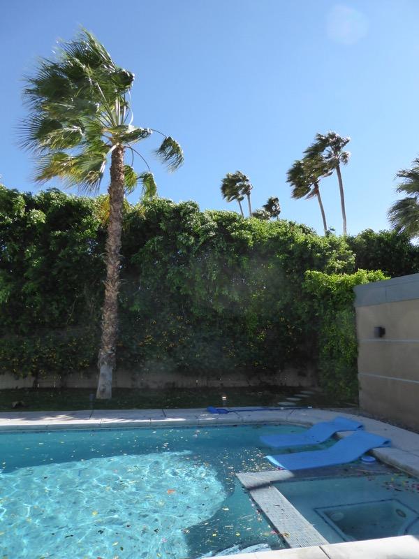 Windy Palm Springs