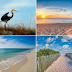 Orange Beach Real Estate Sales & Vacation Rentals