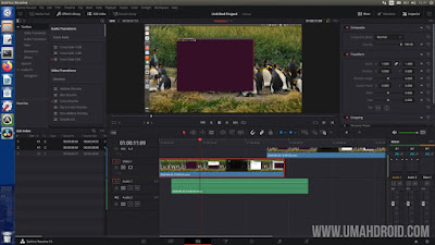Editing Video Dengan Davinci Resolve di Ubuntu