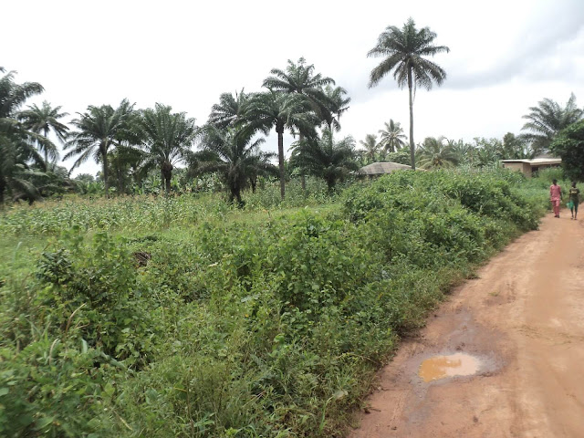 Land at Ibekan Community Third View