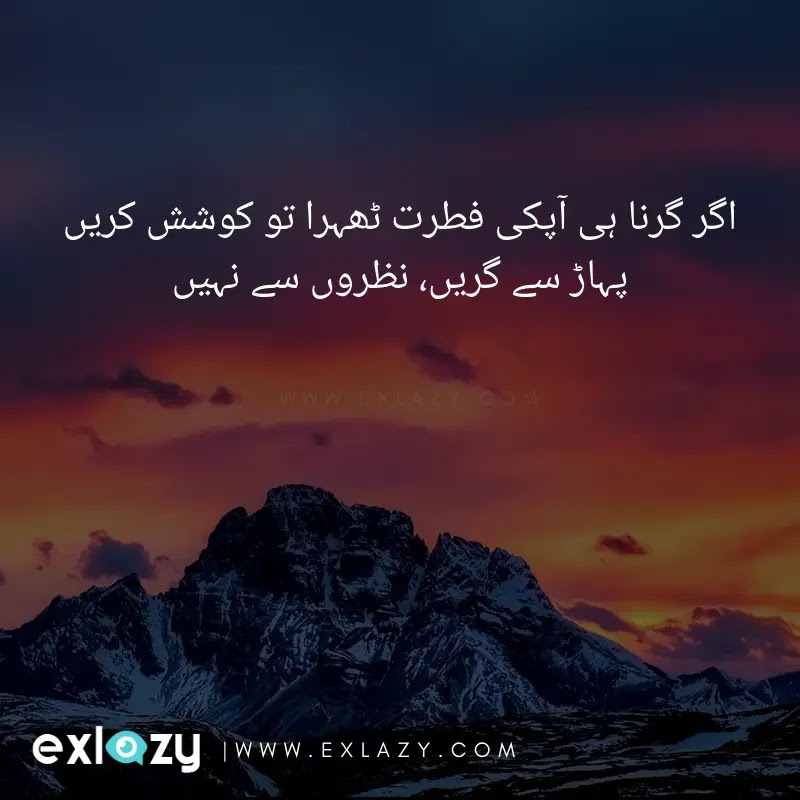 Urdu Advice Quotes and Status