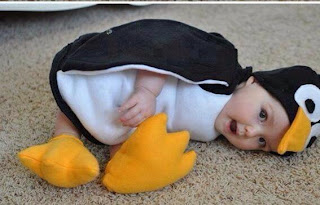 cute penguin costuem for babies