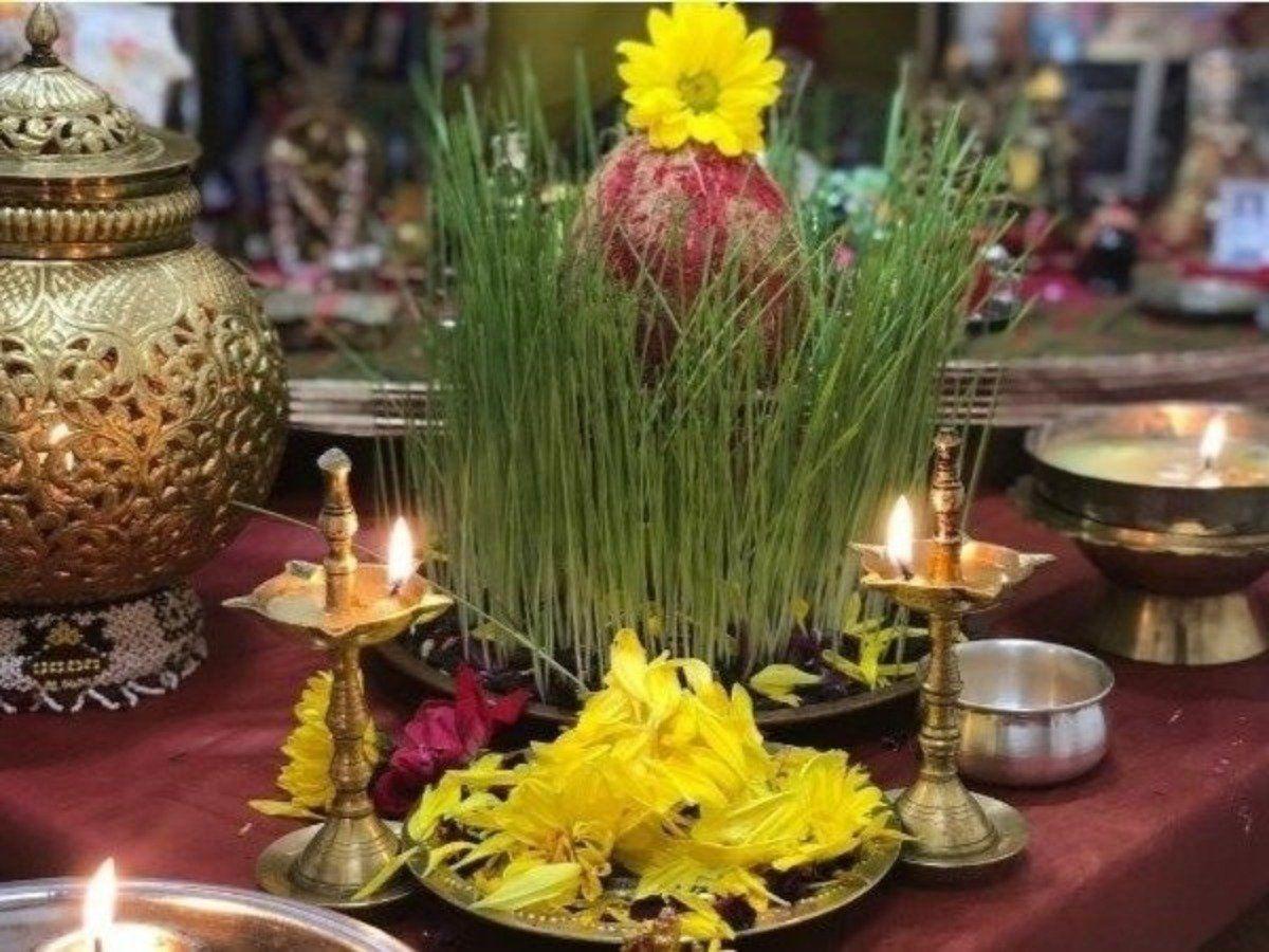 नवरात्र, घट स्थापना, धान्य, धार्मिक महत्व, सातू, गहू, Navatri 2020, navratri ghat, navratri ghatasthapana, grains, dhanya, dhanya list in marathi, Barley benefits in marathi, satu pith fayde, Navratri mahiti, सातूचे फायदे