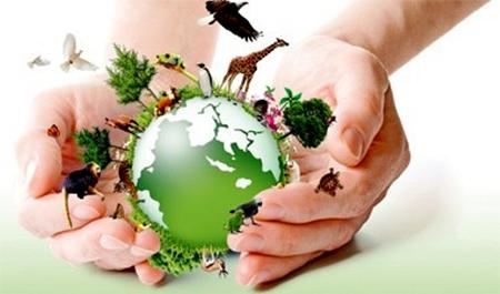 O MPF-BA quer saber sua opinião sobre atuação do órgão na defesa do Meio Ambiente