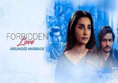 Forbidden Love – Arranged Marriage 2020 Complete Hindi 480p WEB-DL MKV