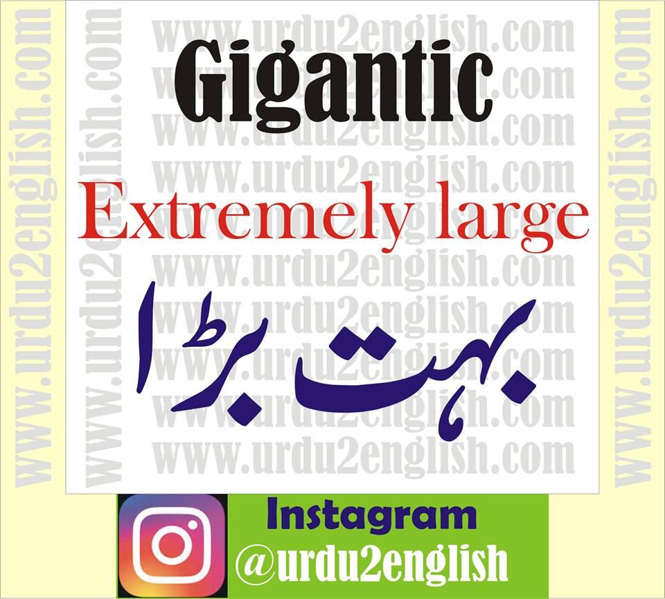 Urdu 2 English: Gigantic Meaning In Urdu