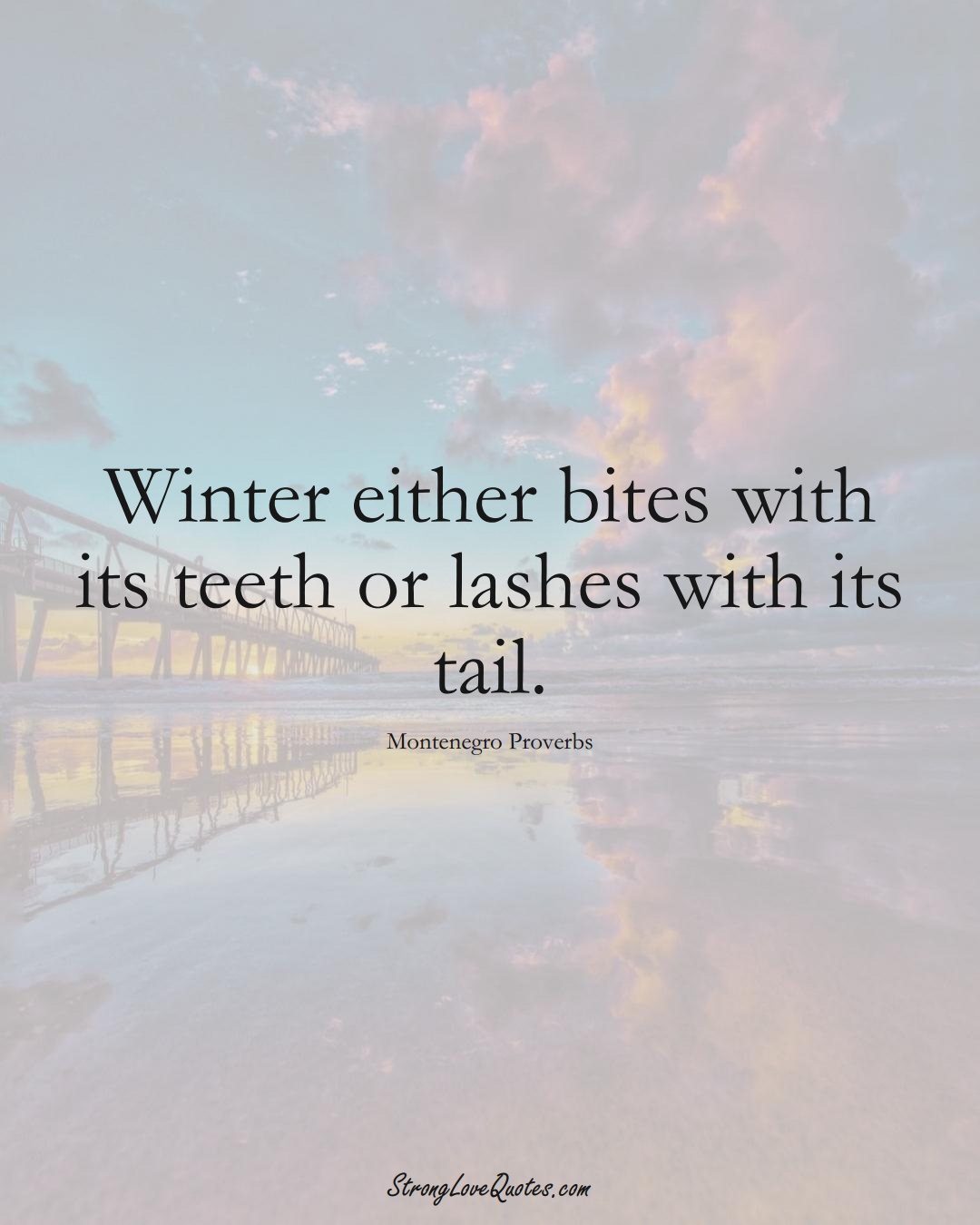 Winter either bites with its teeth or lashes with its tail. (Montenegro Sayings);  #EuropeanSayings