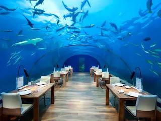 9. Ithaa Undersea, Maldives, $ 320 Per Kepala