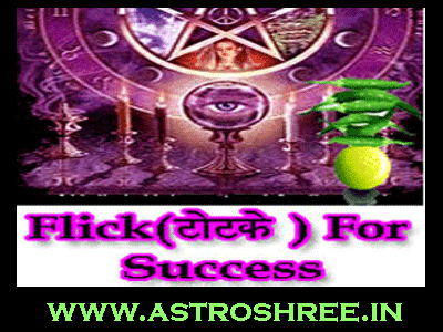flicks, totke for success in life by best astrologer of india