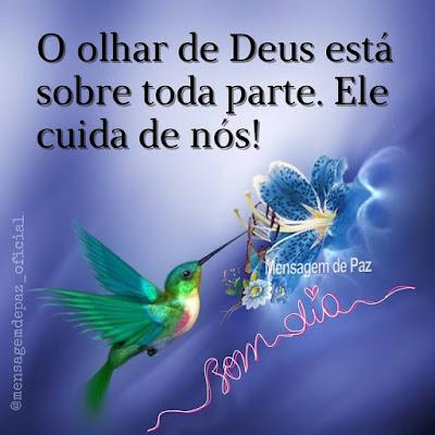 O olhar de Deus está sobre toda parte. Ele cuida de nós! Bom Dia!