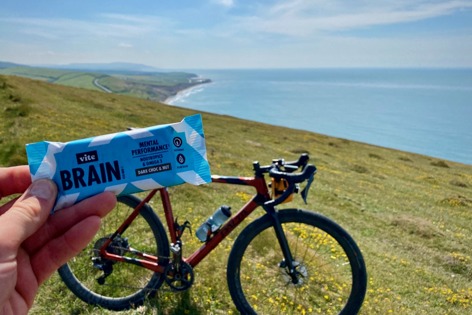 Nutrition Review – Vite Brain Bar Snack Bars with Omega-3 and Nootropics