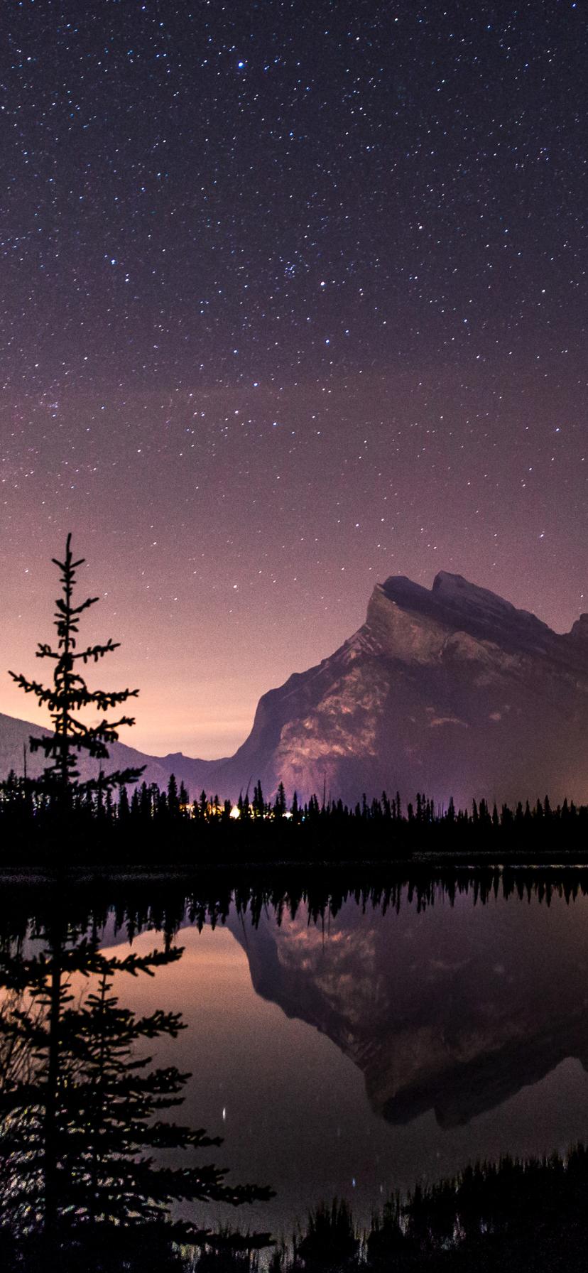 Starry Winter Sky over Lake Mobile Wallpaper
